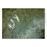 Water-Covered Rock Slab Abstract Nature Photo Card