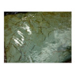 Water-Covered Rock Slab Abstract Nature Photo Postcard