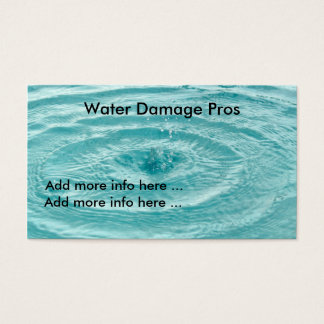 Water damage pros Business Card