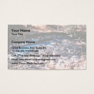Water Diversion Business Card