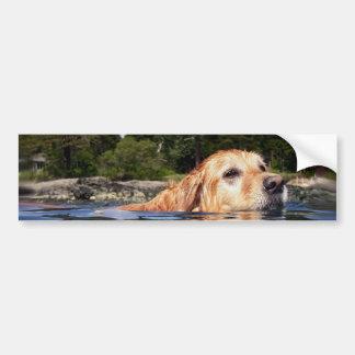 Water Dog - Bumpersticker Bumper Sticker