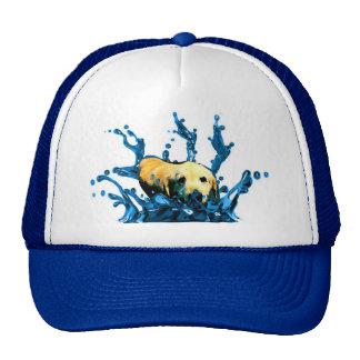 Water Dog Trucker Hat