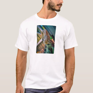 Water Dragon HDR 2 - Rounded T-Shirt