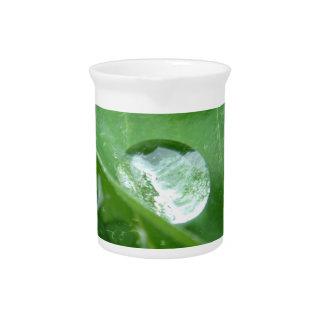 Water Drip on Leaf Water Conservation Design Beverage Pitchers