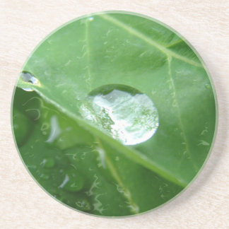 Water Drip on Leaf Water Conservation Design Drink Coaster