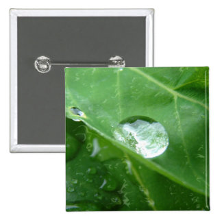 Water Drip on Leaf Water Conservation Design Pinback Button
