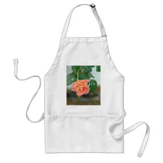 Water dripping from a peach rose aprons