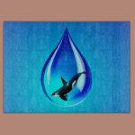 Water Drop and Orca Cutting Board
