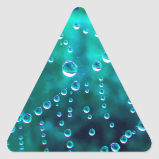 Water drop in the spider net, coloured changes, triangle sticker