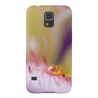 Water drop lily macro photography case for galaxy s5