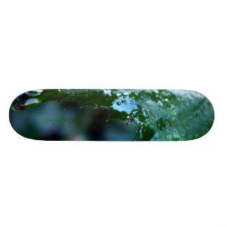 Water Drop on Leaf Skateboard