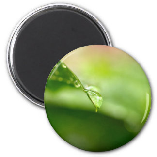 water drop on leaves 2 inch round magnet