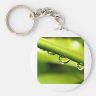water drop on leaves keychain