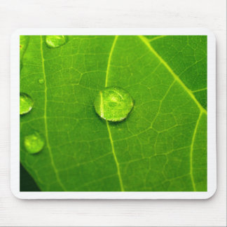 water drop on leaves mouse pad