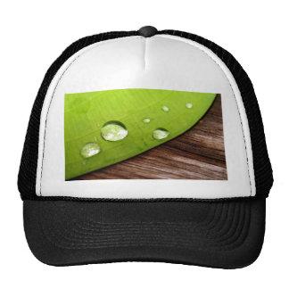 water drop on leaves trucker hat