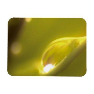 Water Drop Premium Magnet 3 premiumfleximagnet