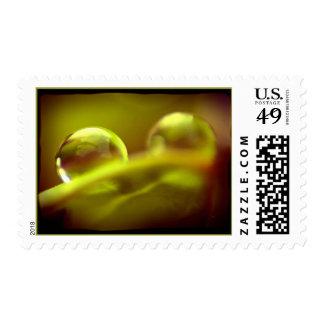 Water Drop Stamp 2