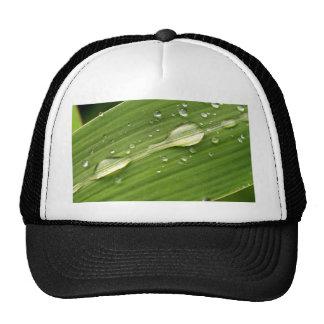 water drop trucker hat