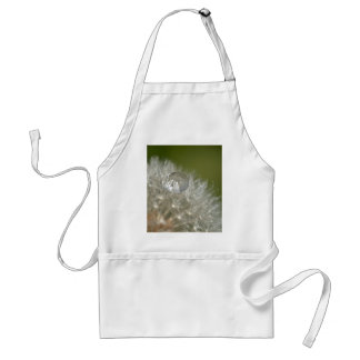 Water droplet on a dandelion adult apron