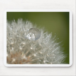 Water droplet on a dandelion mouse pad