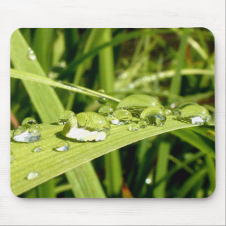 Water Droplets Mouse Pad