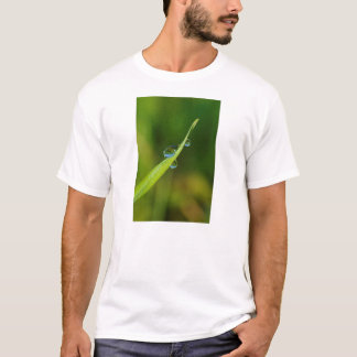 Water Droplets on a Green Blade of Grass T-Shirt