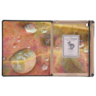 Water Droplets on Autumn Leaf iPad Covers