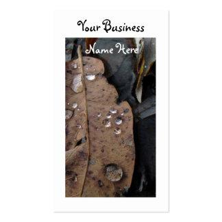 Water Droplets on Fallen Leaf Business Card