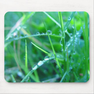 Water Droplets on Grass Mouse Pad