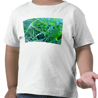 Water droplets on grass t shirt