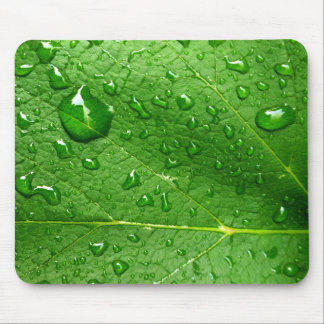 Water Droplets on Leaf Mousepad