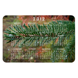 Water Droplets on Spruce Bough; 2012 Calendar Magnet