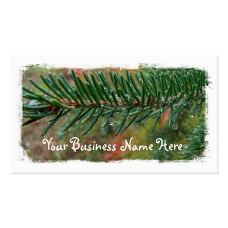 Water Droplets on Spruce Bough Business Card