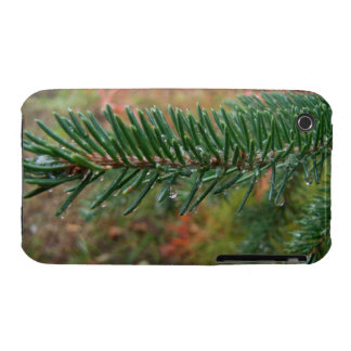 Water Droplets on Spruce Bough iPhone 3 Case-Mate Case