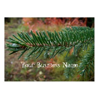 Water Droplets on Spruce Bough Large Business Card