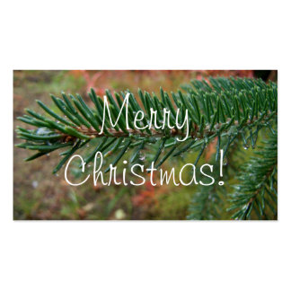 Water Droplets on Spruce Bough; Merry Christmas Business Card