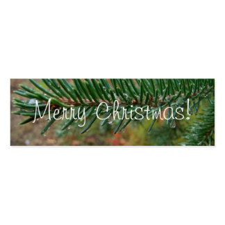 Water Droplets on Spruce Bough; Merry Christmas Mini Business Card