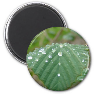 Water drops 2 inch round magnet