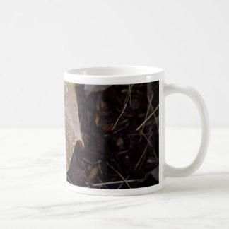 Water Drops Leaf 3 Coffee Mugs