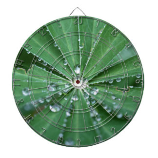 Water drops on a leaf. dartboards