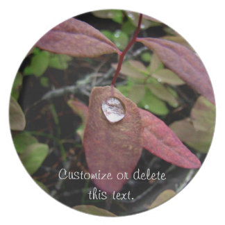 Water Drops on Foliage Dinner Plate