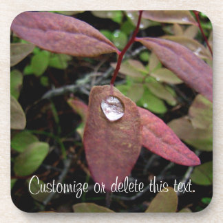 Water Drops on Foliage Drink Coaster