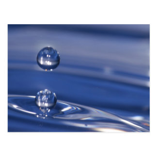 Water Drops Postcard