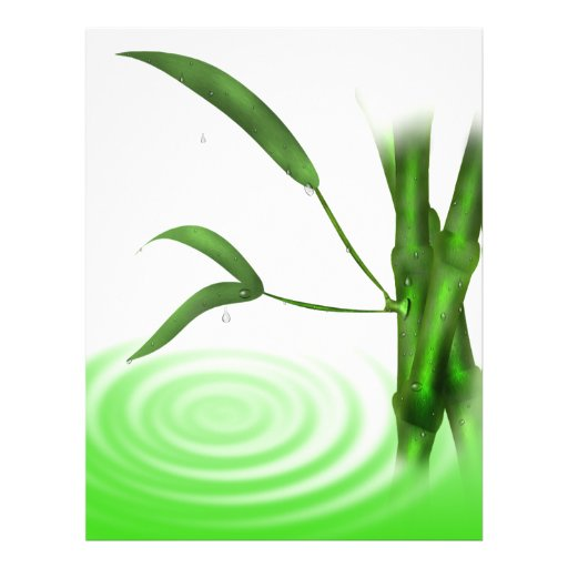 Water drops water  ripple bamboo plant  Flyer