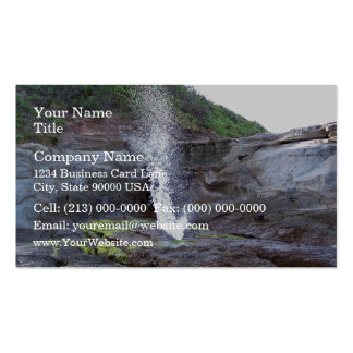 Water errupting from blow hole business card template