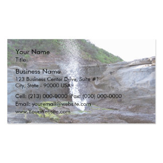 Water errupting from blow hole business card templates