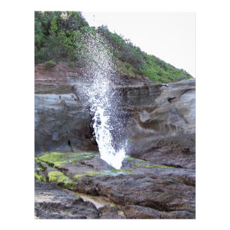 Water errupting from blow hole flyers