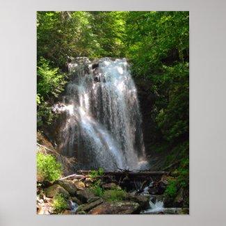 Water fall Georgia Poster