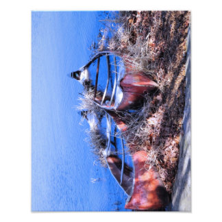 Water Filled Canoes Photographic Print