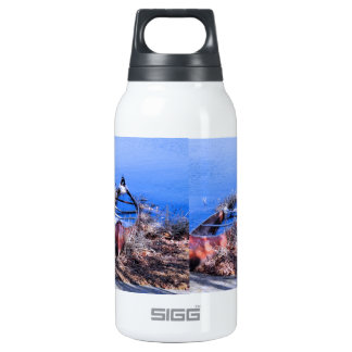 Water Filled Canoes Thermos Water Bottle